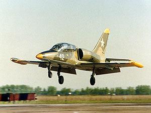 Под Харьковом разбился учебный реактивный самолет Л-39. Пилот ...