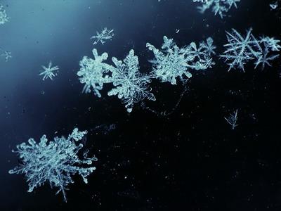 Дни в харькове будет идти снег