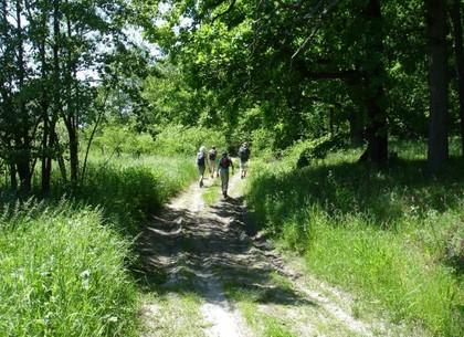 Сверхдлинный туристический маршрут объединит три национальных парка Харьковщины