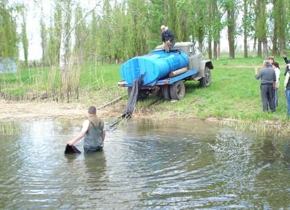 В водохранилище на Харьковщине выпустили десятки тысяч карпов, толстолобиков и белых амуров (ФОТО)