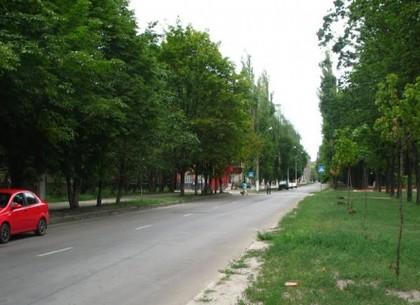 На ХТЗ кронируют деревья: