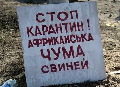 ВХарьковской области устранено  27 свиней из-за вспышки АЧС