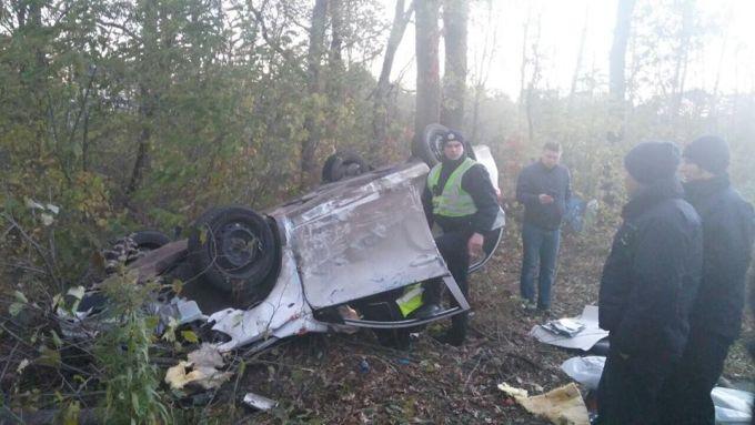 Автомобиль влетел снес ограждение и влетел в кювет (ФОТО)