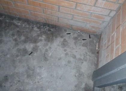 ВХарькове неизвестные устроили стрельбу избалкона многоэтажки