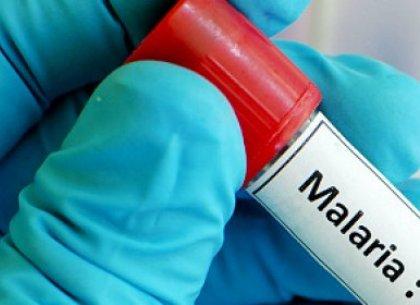 ВХарькове ученик изИндии попал в поликлинику смалярией