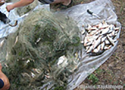 Рыбного браконьера поймали на Червоонооскольском водохранилище