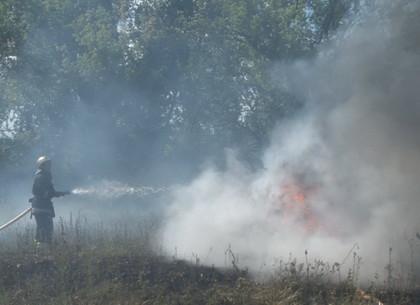 На Харьковщине горят экосистемы