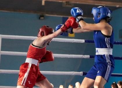В Харькове стартовали Кубок и Чемпионат Украины по боксу среди женщин