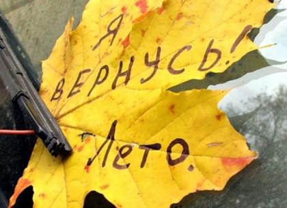 Вернется ли в Украину жара: прогноз синоптиков