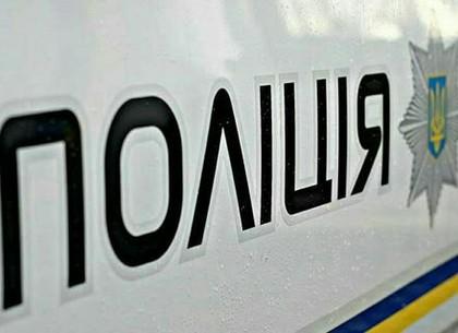 Остановленный за нарушение ПДД водитель бросился под патрульную машину