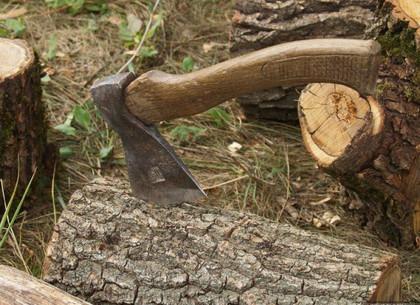 Прокуратура передала в суд дело незаконного лесоруба Гомольшанских лесов