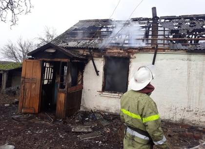 ВКиеве впожаре вмногоэтажке погибла женщина
