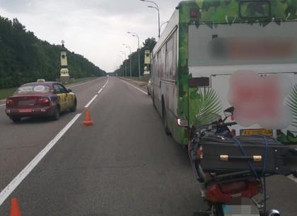 Мотоциклист врезался в автобус экопарка, есть пострадавшие