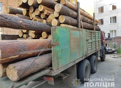 На Салтовке копы перехватили грузовик с незаконно добытой древесиной