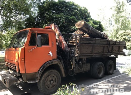 Добыча черных лесорубов: еще один грузовик не ушел от копов