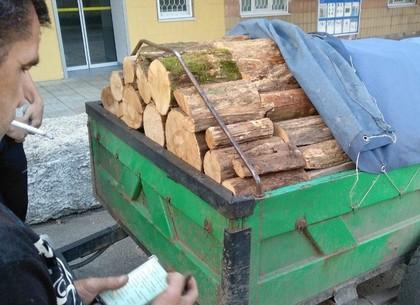 Еще один автомобиль с нелегальной древесиной остановили в области
