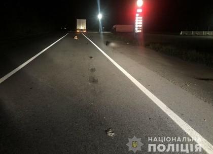 В полночь на автотрассе погиб пешеход