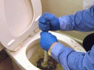 Харьковчане засоряют канализацию обрезками овощей и предметами гигиены - специалисты Водоканала взывают к сознательности
