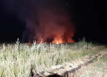 Крупный пожар под Харьковом потушили за полночь