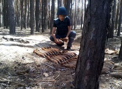 В лесу под Харьковом прозвучали взрывы