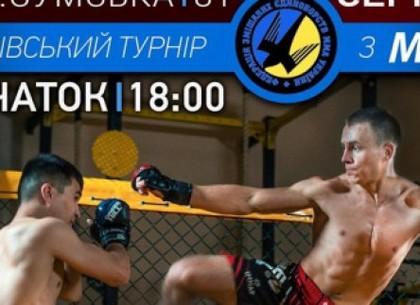 Фестиваль боевых искусств в парке Горького: где смотреть онлайн-трансляцию