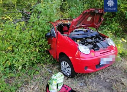 ДТП возле Лоска: после столкновения автомобиль слетел с трассы в кусты