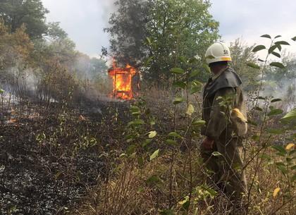 Домики дачного кооператива сжег пожар сухостоя