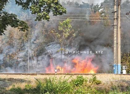 ХТЗ: вдоль Московского проспекта пылает пожар (ФОТО, ВИДЕО)