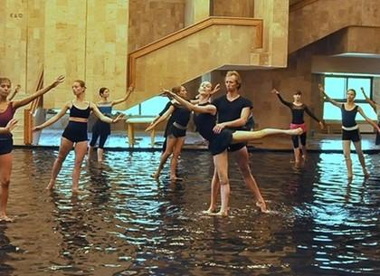 «Лебединое озеро» на воде: харьковчан ждет необычная премьера