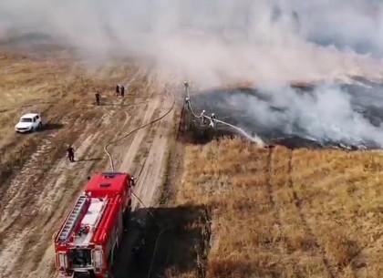 Пожар торфяников возле военного полигона тушат четвертый день
