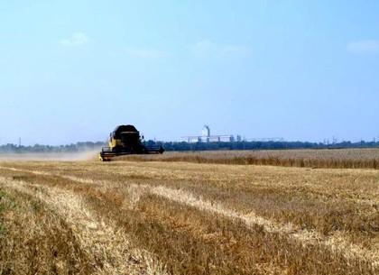 Харьковские фермеры могут собирать на 40-50% больше урожая