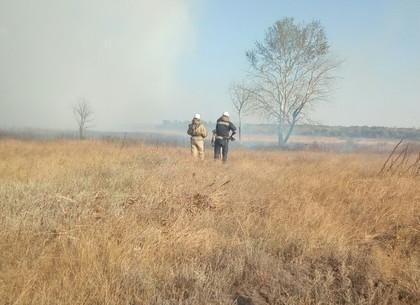 Пожар торфяников возле военного полигона: площадь горения уменьшилась не треть