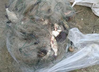 На Печенежском водохранилище задержали рыбака с запрещенной сетью