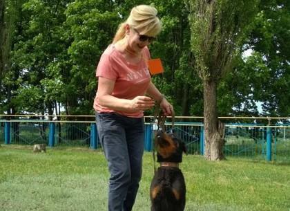 В приюте для животных пройдет День открытых дверей