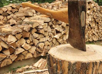 Жители области погорели на честно купленных дровах