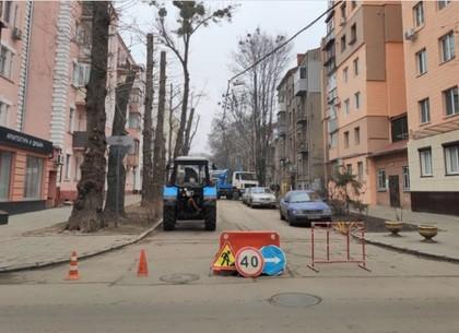 Харьковские коммунальщики избавляются от романтического рождественского полупаразита