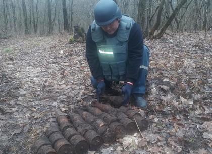 Под конец месяца взрывотехники собрали неплохой урожай гранат в селе под Харьковом