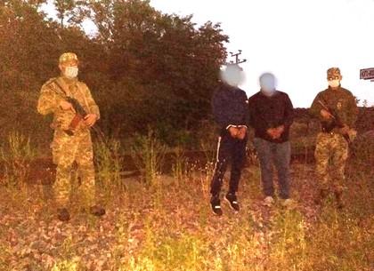 Пограничники задержали азербайджанца, который пытался пробраться в Украину