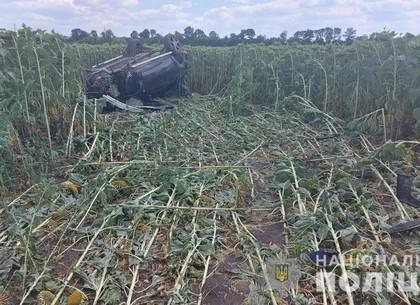 Смертельное ДТП: молодой водитель погиб на месте