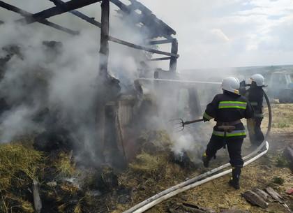 Спасатели 5 часов боролись с пожаром на сеновале, чтобы предотвратитить трагедию у жилого дома