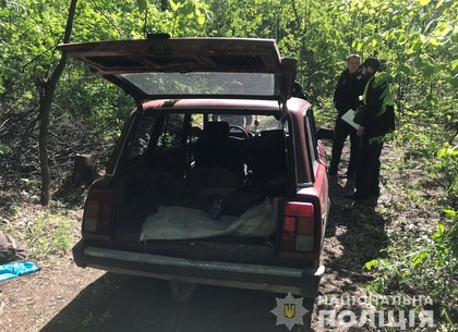 Фоторепортаж: черных лесорубов поймали на горячем (ГУНП)
