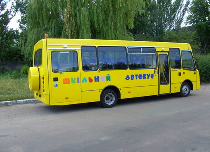 Суд оштрафовал водителя школьного автобуса, который сбил пассажирку (ЕРСР)