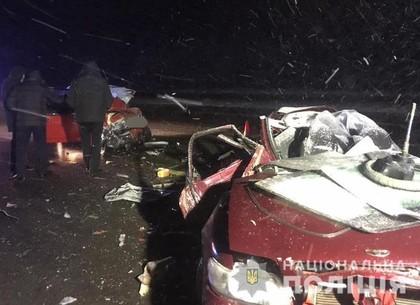 Водителю, нарушившему правила ПДД и выжившему в аварии с пятью трупами, объявили о подозрении (ГУ НП)