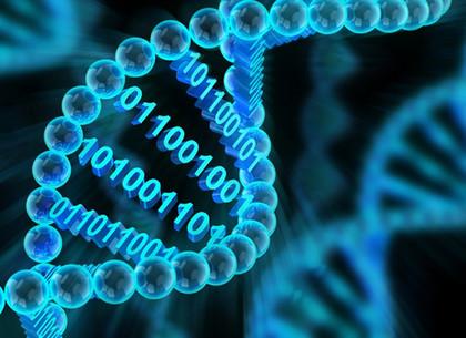 Всех подозреваемых и осужденных за умышленные преступления возьмут на ДНК-учет
