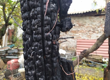 ФОТО: Ночной пожар в сарае угрожал жилью харьковчан (ГСЧС)