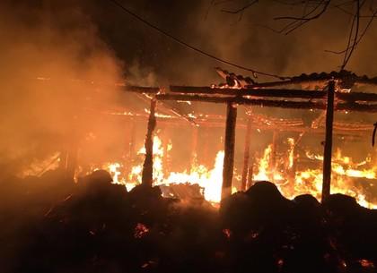 ФОТО: В частном хозяйстве под Харьковом сгорело 50 свиней (ГСЧС)