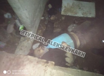 На Алексеевке найден труп мужчины (Telegram)