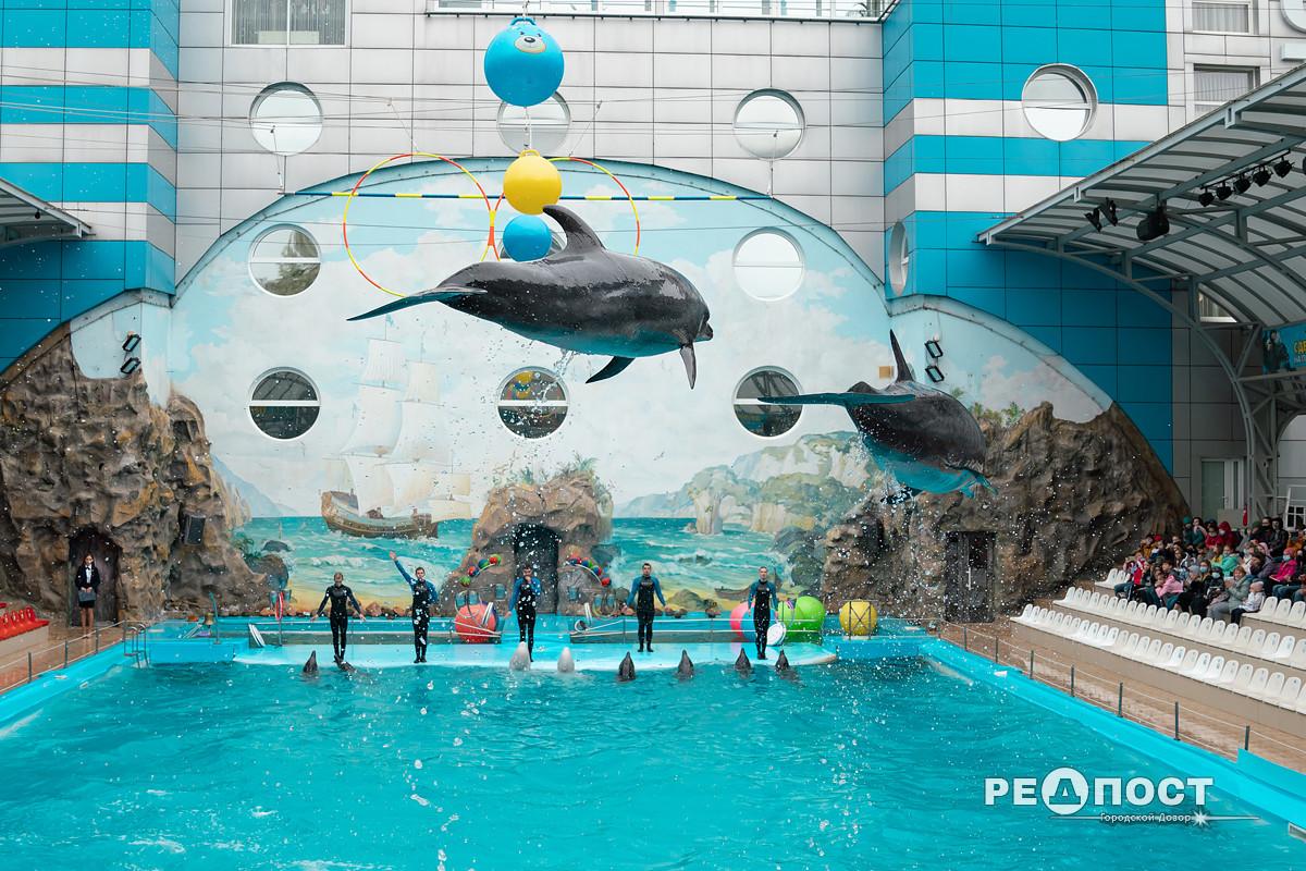Дельфинарий в Харькове