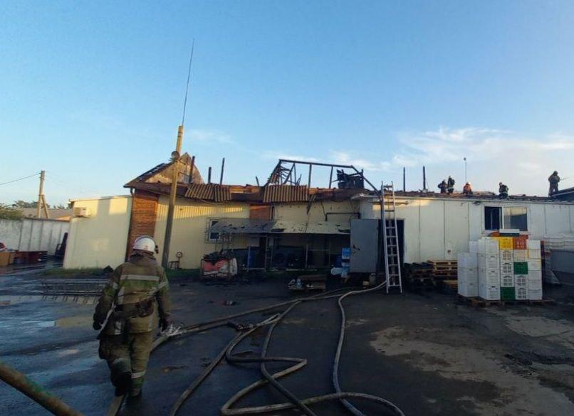 В Харьковском районе вспыхнул крупный пожар. Новости Харькова