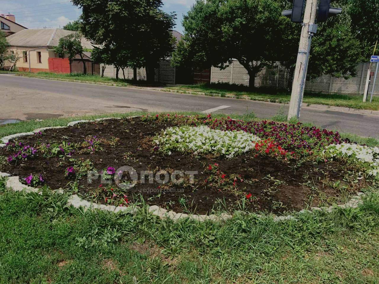 В Харькове из клумбы вандалы выкопали 2000 цветов